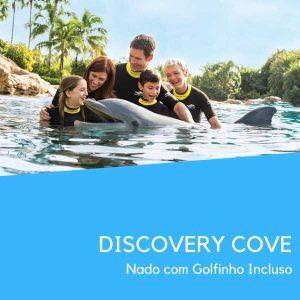 Discovery Cove Golfinhos