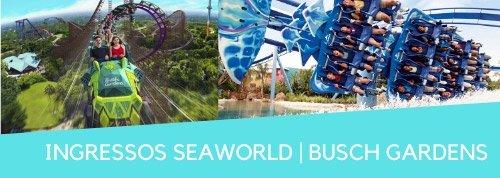 Ingresso SeaWorld Busch Gardens